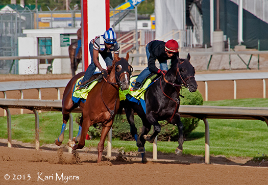 The Bob Baffert graded stakes winners Power Broker (outside) and Govenor Charlie.
