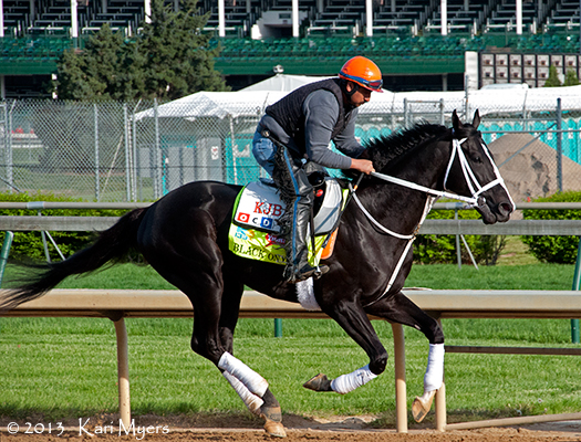 The lovely Black Onyx out for a gallop. He was scratched from the Kentucky Derby the following morning due to a non-displaced ankle chip. He's fully recovered and back in training now.