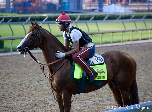 Apr 30, 2014: California Chrome takes in the scenery.