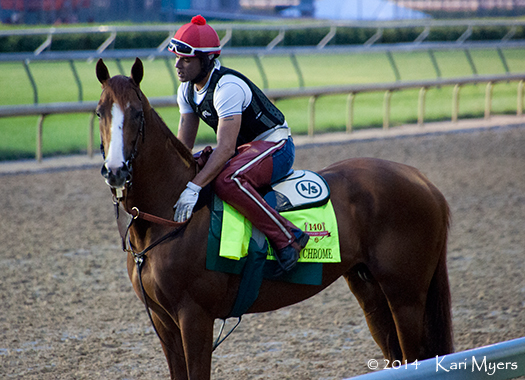 Apr 30, 2014: California Chrome.