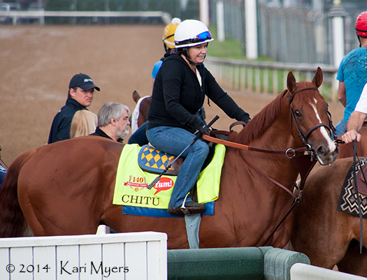 Apr 29, 2014: Chitu steps out on the track for a morning gallop.