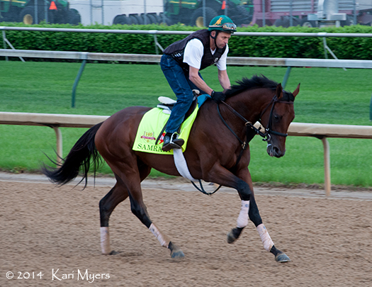Apr 30, 2014: Samraat out for a gallop during the dedicated training time for Derby and Oaks horses.