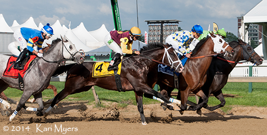 May 16, 2014: The Grade 3 Pimlico Special.