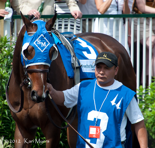 May 5, 2012: The handsome Agent Di Nozzo in the Churchill Downs paddock before his solid 3rd in an allowance race behind stakes winners Skyring and Golden Ticket.