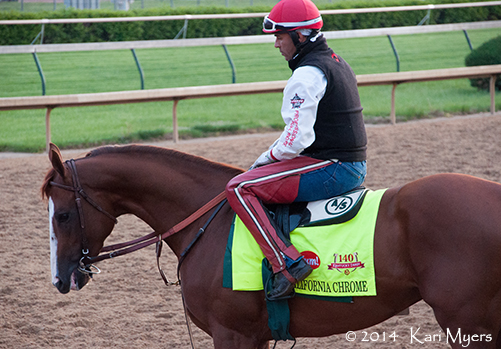 May 1, 2014: California Chrome at Churchill Downs.