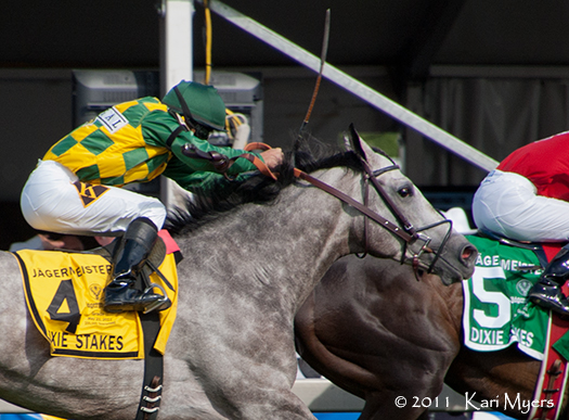 May 21, 2011: Paddy O'Prado in the stretch of the Grade 2 Dixie Stakes.