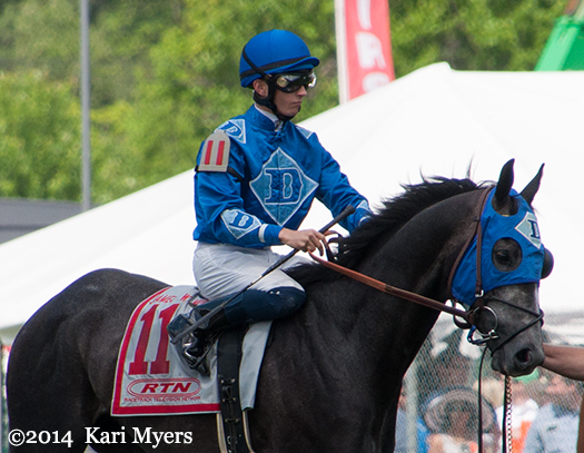 May 17, 2014: Elevated approaches the Pimlico starting gate.