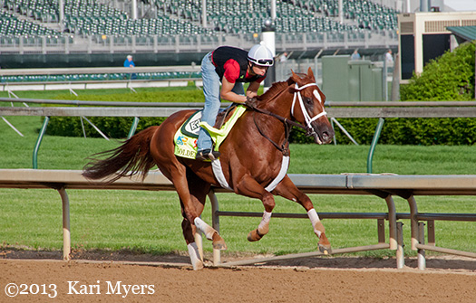 May 2, 2013: Golden Soul a few mornings before his 2nd in the Kentucky Derby.