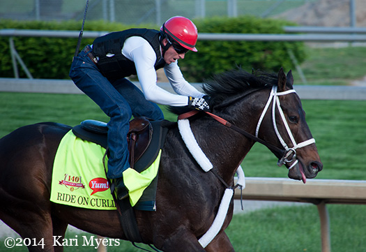 May 1, 2014: Ride On Curlin.