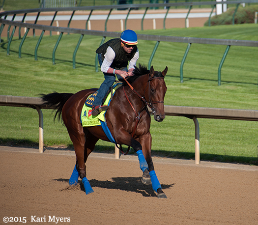 Apr 29, 2015: American Pharoah prepping for the Derby.
