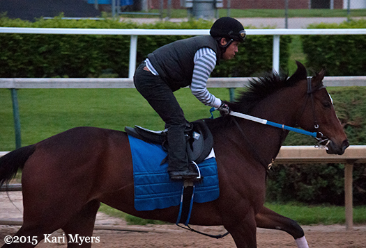 Apr 30, 2015: Untapable gallops at Churchill Downs.