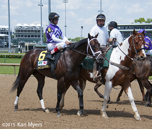 May 2, 2015: Competitive Edge in the post parade for the Pat Day Mile at Churchill Downs.